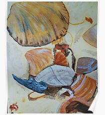 Seashells - Acrylic Painting Poster