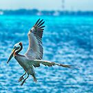 Landing HDR by Imagery