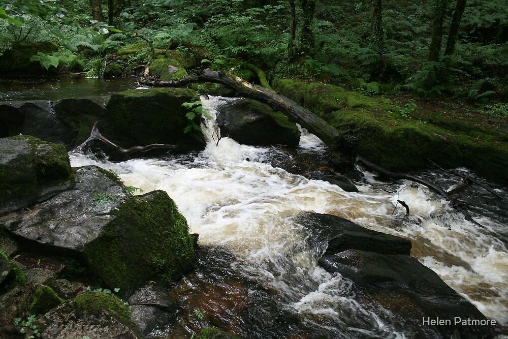 Golitha Falls by Helen Patmore