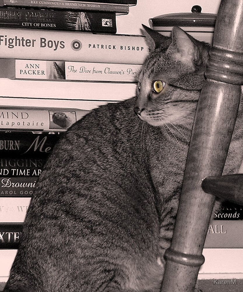 Book Cat by KarenM