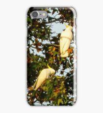 Wild cockatoos iPhone Case/Skin