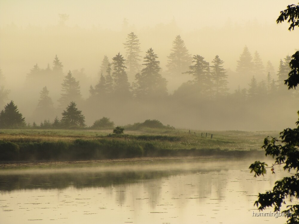 Misty Green by hummingbirds