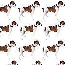 Asa Grey boxer dog by johnnabrynn