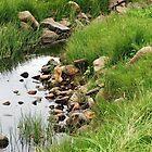 Rocky Stream by Kathryn Jones