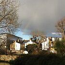 In Rainbows by Steven Mace