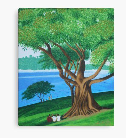 MORETON BAY FIG  (BOTANICAL GARDENS, SYDNEY) Canvas Print