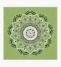 Star Mandala Green Photographic Print