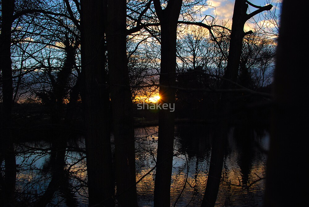 Mill Pond Sunset by shakey