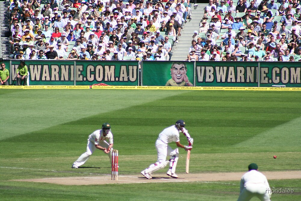 our day at the cricket 2007 by rhondalee