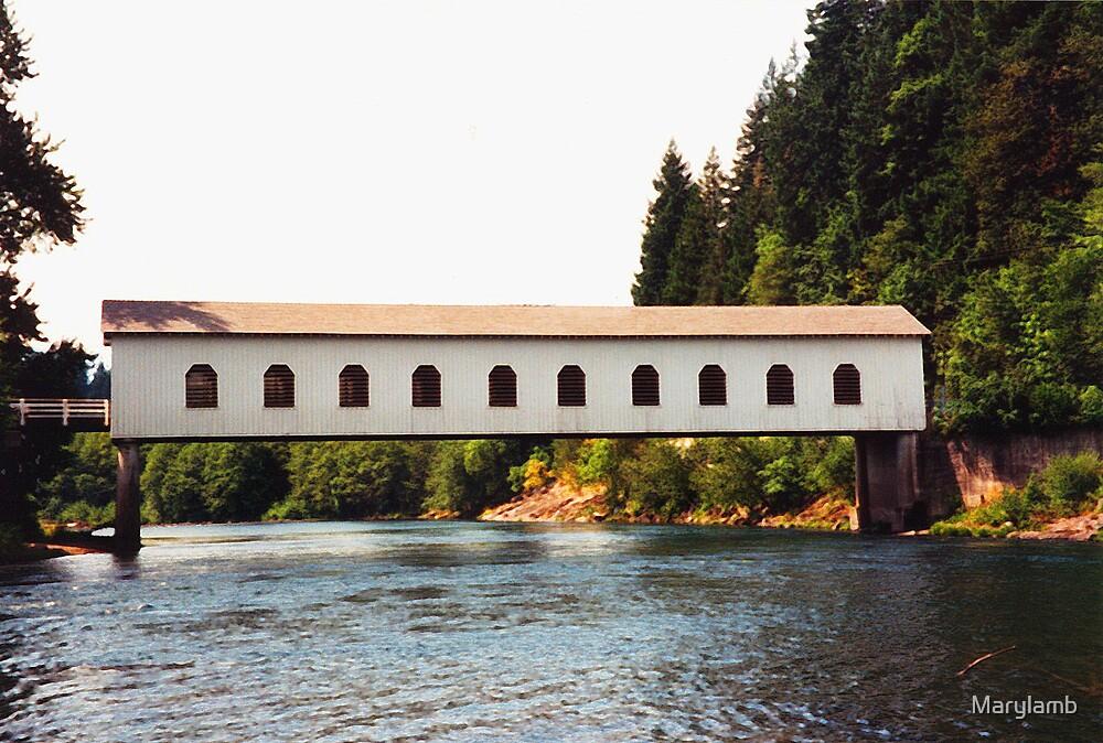 Goodpasture Covered Bridge by Marylamb