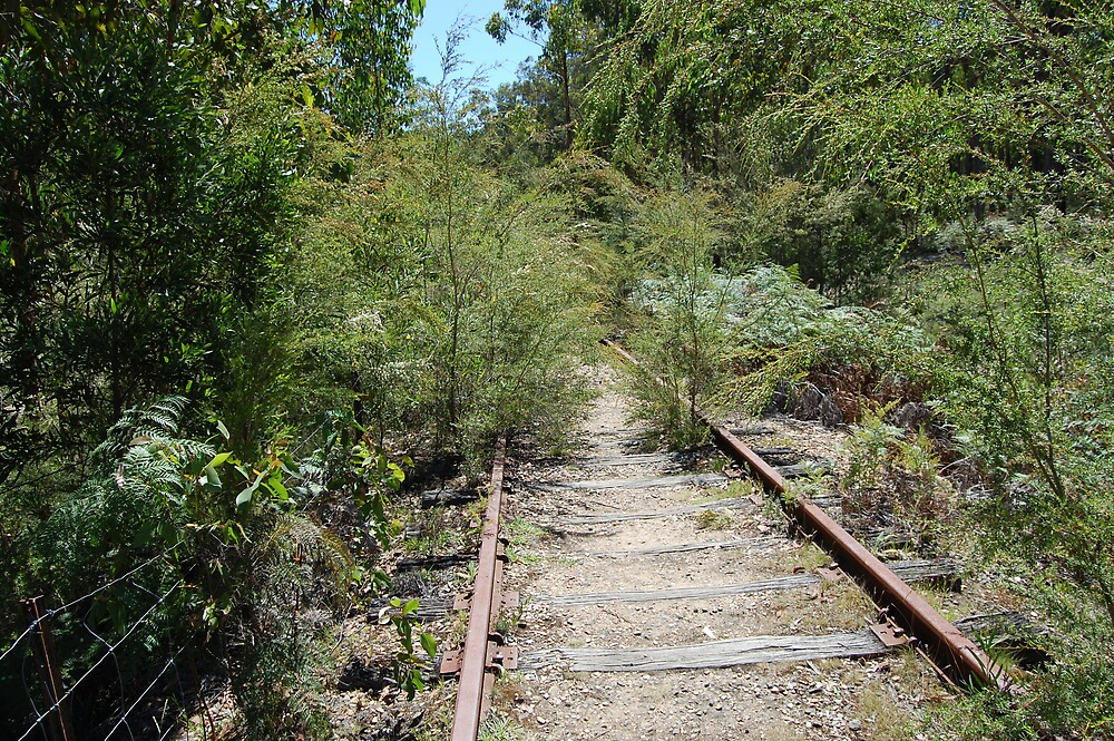 Old Railway line by Beetlebug