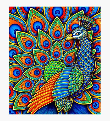 Paisley Peacock Photographic Print