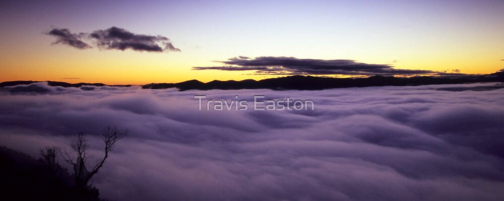 Dawn above a sea of clouds by Travis Easton