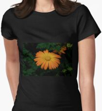 Yellow daisy flowering in the garden Womens Fitted T-Shirt