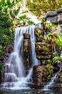 Tropical Falls by PhotosByHealy