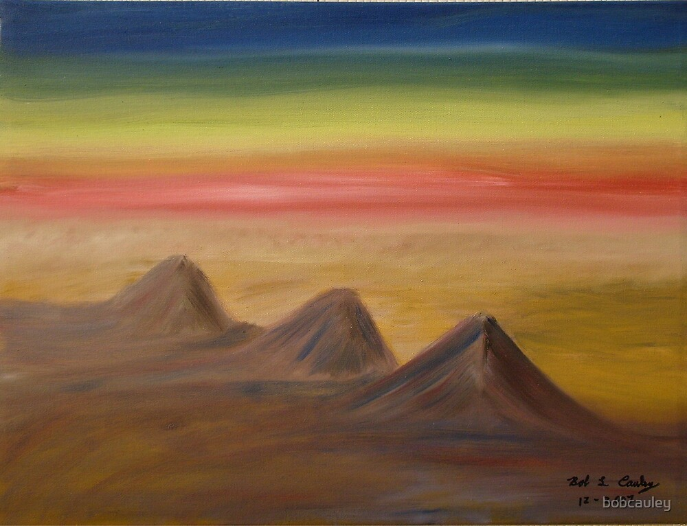 Desert Sunset by bobcauley