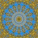 Spiral Architect by jodi payne