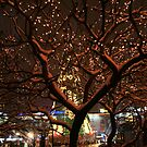 Is this a Christmas Tree too? by larga