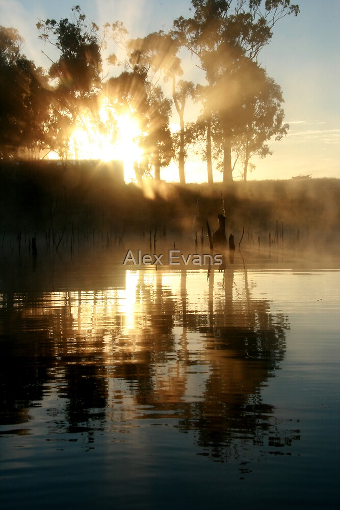 Golden Sunrise by Alex Evans