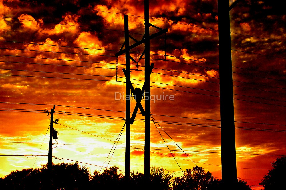Power(lines) by Dian  Squire