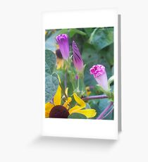 Beautiful Cone Shaped Flowers Greeting Card