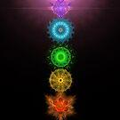 The Seven Chakras by Daniel Schmidt