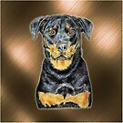 Rottweiler to love by didielicious