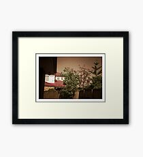 My backyard - Pinhole photography Framed Print