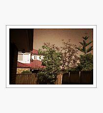 My backyard - Pinhole photography Photographic Print
