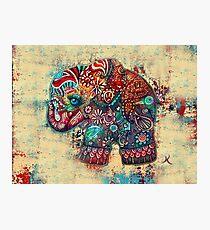 Vintage Elephant TShirt Photographic Print