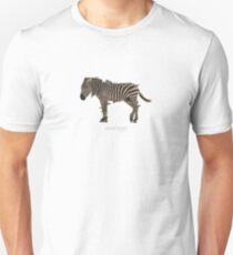 Anarchist (TS) Unisex T-Shirt