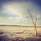 Lake Ninan by Grant Scollay