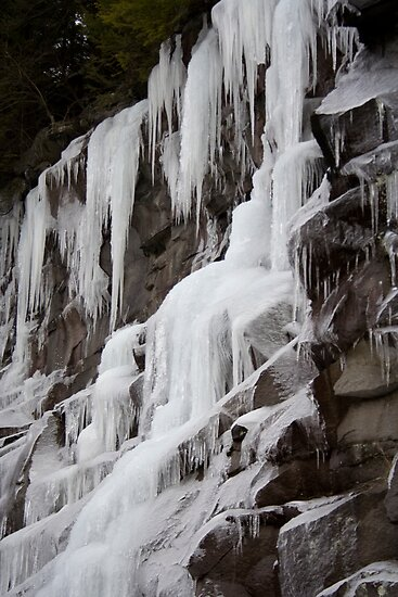 Winter Runoff Series:  Frozen Cliffs IV by Dan Cahill