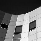Grey Scale by malcblue