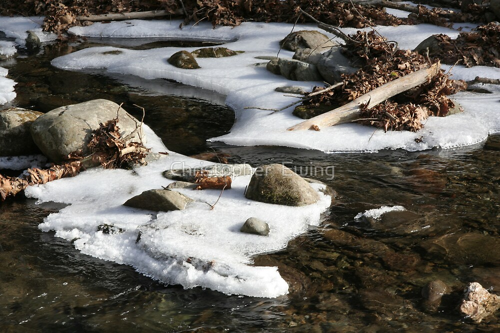 the slow thaw by Christopher  Ewing