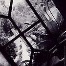 EDEN DREAMS by REKHA Iyern [Fe] Records Canada