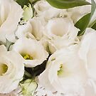 Delicate White Lisianthus Flowers by Sandra Foster