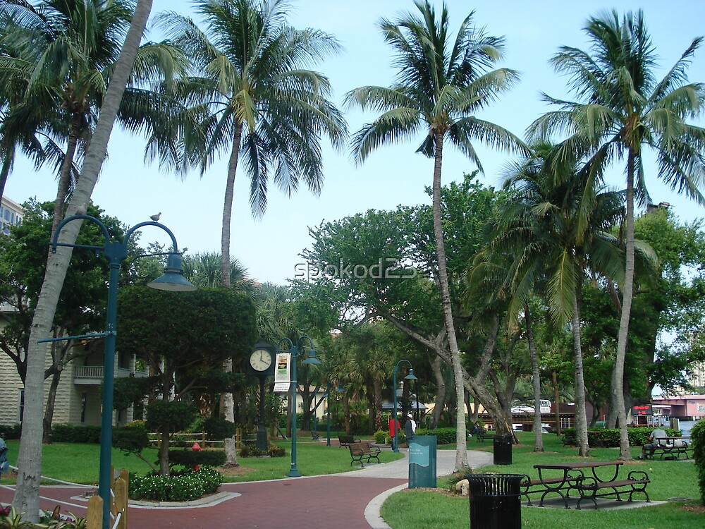 Old Fort Lauderdale by spokod23