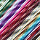 Diagonal Lines by Thaddeus Zajdowicz