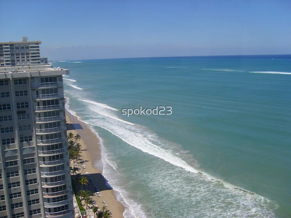 Fort Lauderdale Beach Panorama by spokod23