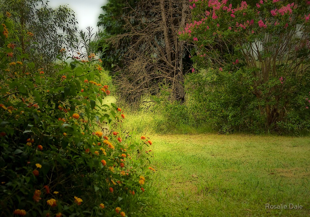 Scheyville National Park by Rosalie Dale