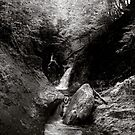 Skinny Dipping at Welton Falls by Wayne King
