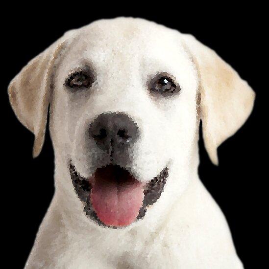 «Cachorro Labrador» de storebycaste