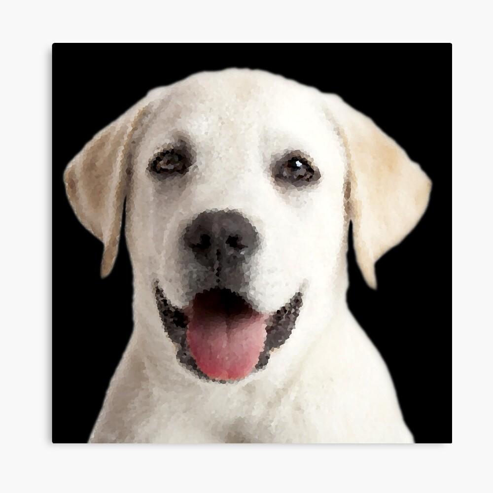 Cachorro Labrador Lienzo