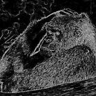Gorilla... a very human look1 (c)(t) by Olao-Olavia par Okaio Créations fz 1000  mars 2016 by Olivier Caillaud