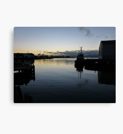 Early morning in Wellington Harbour Canvas Print
