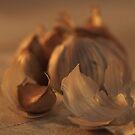 Garlic by jaker5000
