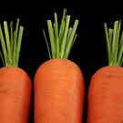 Carrots all in a row by LydiaBlonde