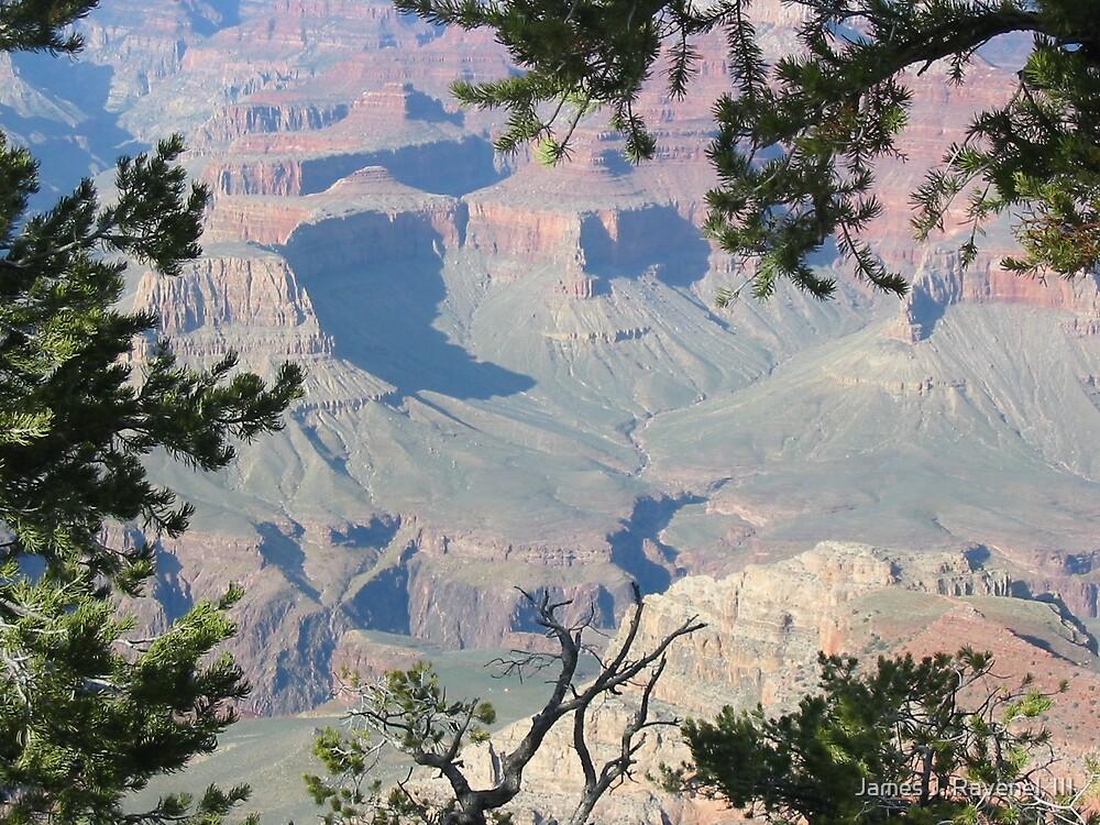 Grand Canyon-2 by James J. Ravenel, III
