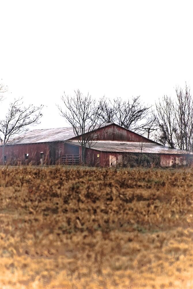 That Barn by Rod  Adams